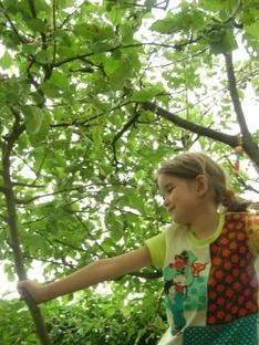 Wandern mit Kindern- Von Algund nach Vellau